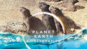 Planet Earth: A Celebration thumbnail