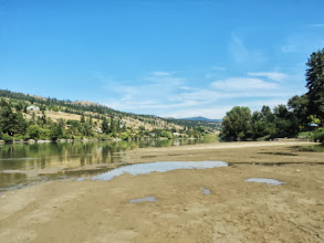 Photo: Back in Kamloops on Monday now. We went down to the Thompson River... near their home for some swimming, fishingand Frisbee chasing.