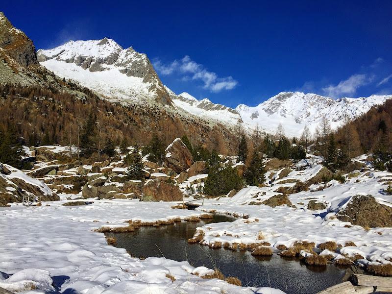 Let it snow! di Tita_86