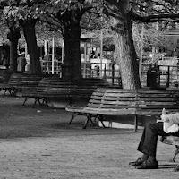 Malinconica solitudine di