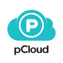 pCloud Save