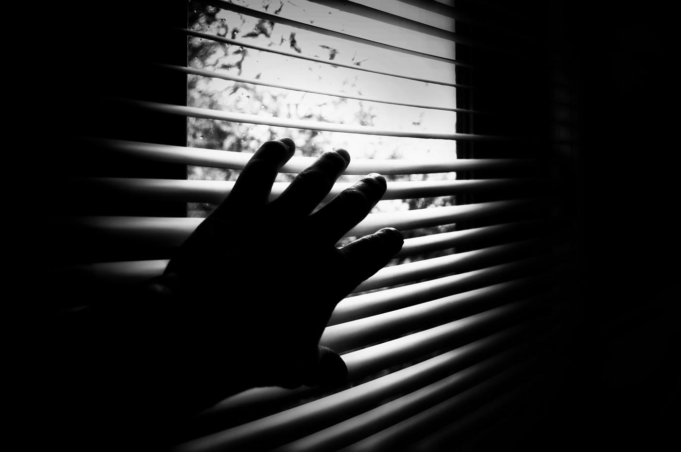 Alla finestra in attesa di..... di utente cancellato