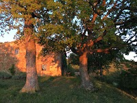 Natuurhuis Podere Santa Pia (Castiglioncello Bandini)