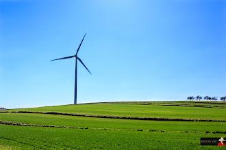 Photo: King size?#windmills #windmillphotography #landscapephotography #powerplant #windfarms #europeanphotography #landscape #blue #sky #green #grass