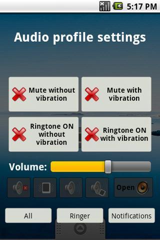 Quick audio settings screenshot 2