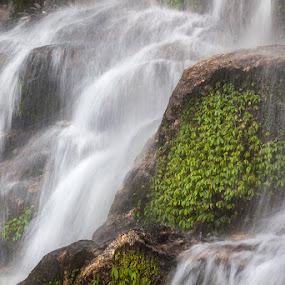 Bakthang Falls by Mrigankamouli Bhattacharjee - Landscapes Waterscapes ( waterscape bakthang falls water flow sikkim india )