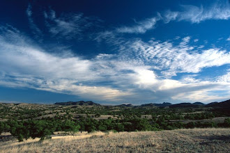 Photo: Desert Sky, Pajarita Wilderness, Arizona