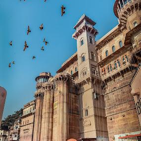 banaras by Pranjal  Kumar Ƿrānx - Buildings & Architecture Public & Historical ( hindu, banaras, pranjal kumar, india,  )