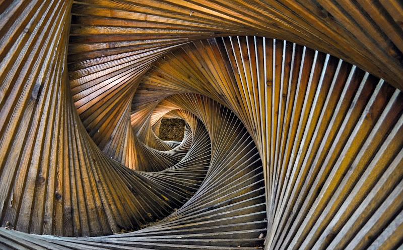 Spirale di Legno di Diana Cimino Cocco