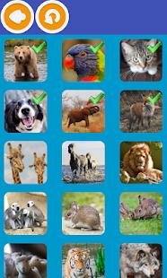 Animal Quiz - náhled