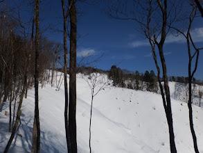 林道から外れ尾根沿いを進む