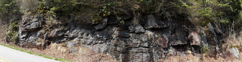 Photo: A rock outcrop on Roan Mountain (Tennessee)