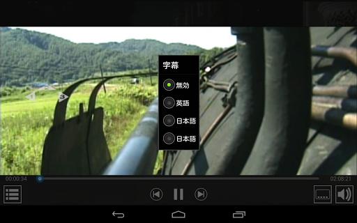 DVD player - TrueDVD Streamer 1.1.19 screenshots 1
