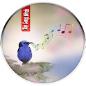 Birds Calls Songs and Sounds icon