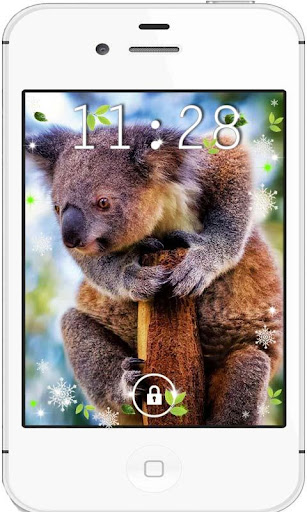 Koala Bears live wallpaper