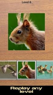 Zvířata puzzle 2 (zdarma) - náhled