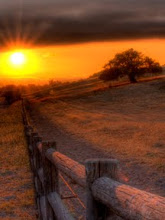 Photo: Taken near San Luis Obispo, California