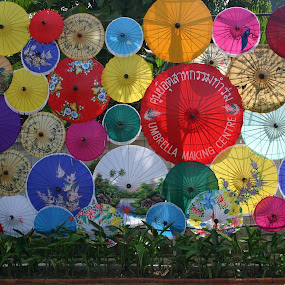 Umbrellas, Thailand by Benny Berget - Artistic Objects Other Objects (  )