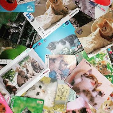 日本小貓款車票30張