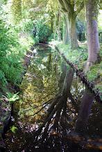 Photo: nog eens: sloot tussen begraafplaats en pastorietuin, Nieuwveen, niet bewerkt