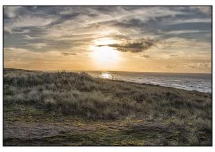 Photo: Nederland - natuur - De Kust Foto: Bert Morsink