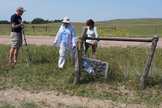 Photo: Paul leads Deb and Nina to our second Sandhills site, which is in a fenced cattle pasture south of Mullen, NE. (Cattle pastures featured prominently in this field trip!)
