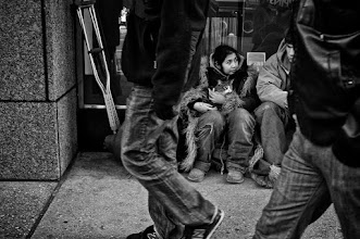 Photo: Homeless Kitty