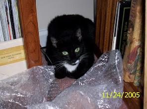 Photo: Edie (2005)