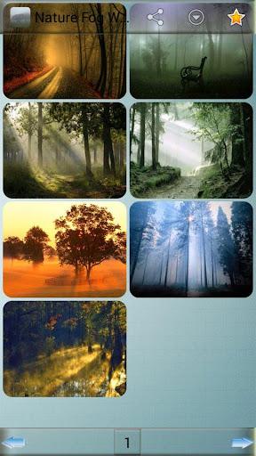 自然霧壁紙