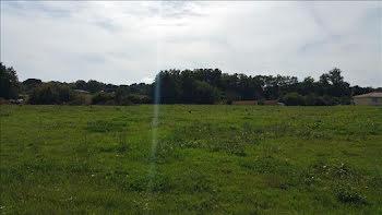 terrain à Serres-Gaston (40)