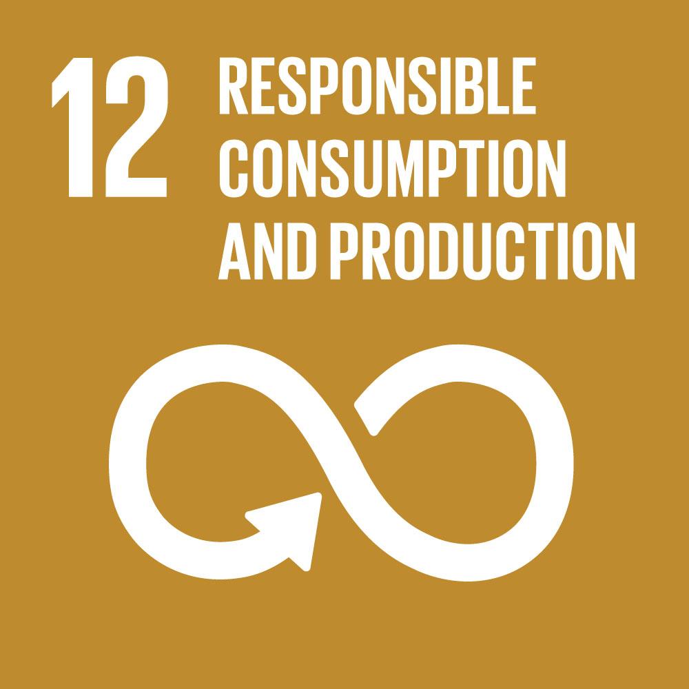 SDG 12 - odpovědná výroba a spotřeba