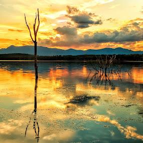 Sunset at Moogarah by Cora Lea - Landscapes Sunsets & Sunrises (  )
