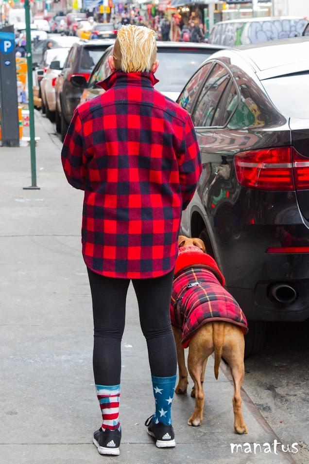 perro y dueño comparten camisa