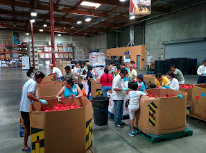Photo: Volunteers inspecting and sorting fresh produce during Sewa Day 2014 in San Diego, CA