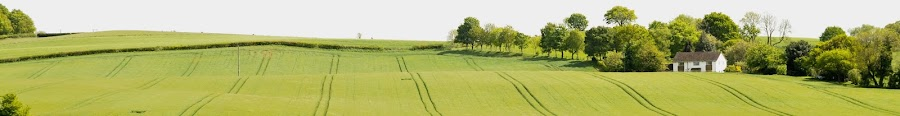 by Chris Bradley - Landscapes Prairies, Meadows & Fields