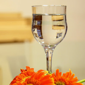 Purity by Kaniz Khan - Artistic Objects Glass (  )