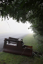 Photo: found along the side of the road one foggy morning.
