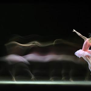 Kimfung CW3 Motion of Ballerina 9995.jpg