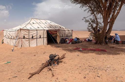 Bivouac; stage énergétique en connexion avec le dromadaire dans le désert Chantal Vereyen