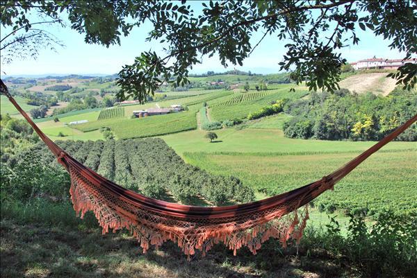Photo: Relax? Avete mai visitato il #piemonte ? In Piemonte basta un amaca per un relax totale fra due vallate, attorniati dai noccioleti e vigneti, godendo di una vista a 360 gradi sulle colline e sulle vicine Alpi. Per scoprire questo luogo magico: http://www.agriturismo.com/agriturismo/piemonte/asti/moncalvo/agriturismo-la-quercia-rossa.asp  The calm reigns supreme deep in the greenery of the vine-yards and hazel groves. http://en.agriturismo.com/farmhouse-accommodation/piemonte/asti/moncalvo/agriturismo-la-quercia-rossa.asp
