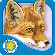 App Icon for Red Fox at Hickory Lane App in Czech Republic Google Play Store