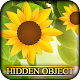 Hidden Object - Peace and Love