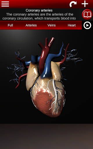 Circulatory System in 3D (Anatomy) 1.58 screenshots 13