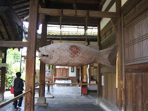 Photo: 魚鼓,日常の行事や儀式の刻限を報じる魚の形をした法器 by FM