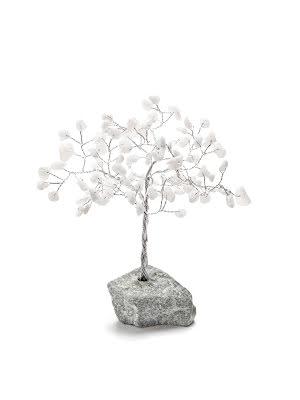 Agat vit, Livets träd