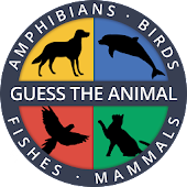 Guess the Animal Cat Dog Quiz