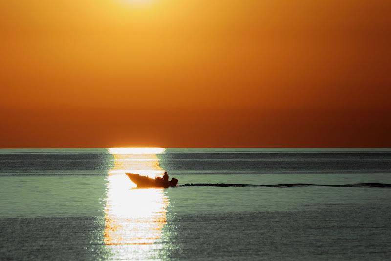 alba in mare di zucco