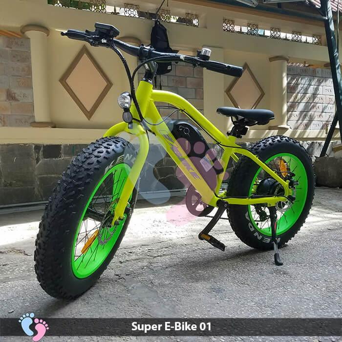 Xe đạp điện địa hình Super E-Bike 01 2