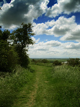 Photo: Hilltop Path In Summer