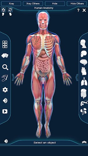 Download Human Anatomy Apk Latest Version App By Visual 3d Science